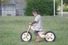 woody-bike1192