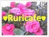 ruricafe
