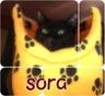 sora2000614