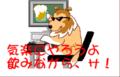 yoidorekomachi