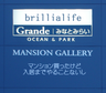 brillialife