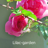 lilac-garden