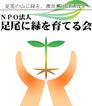 ashio-midori