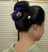 kimononoki