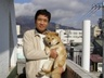 ogino_2006
