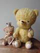 middybear1997