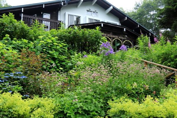 garden-story
