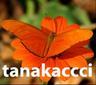 tanakaccci