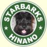 hinano-0216