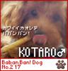 kotaro-n