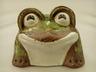 lucky-flower-frog