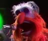 muppetmuppet96