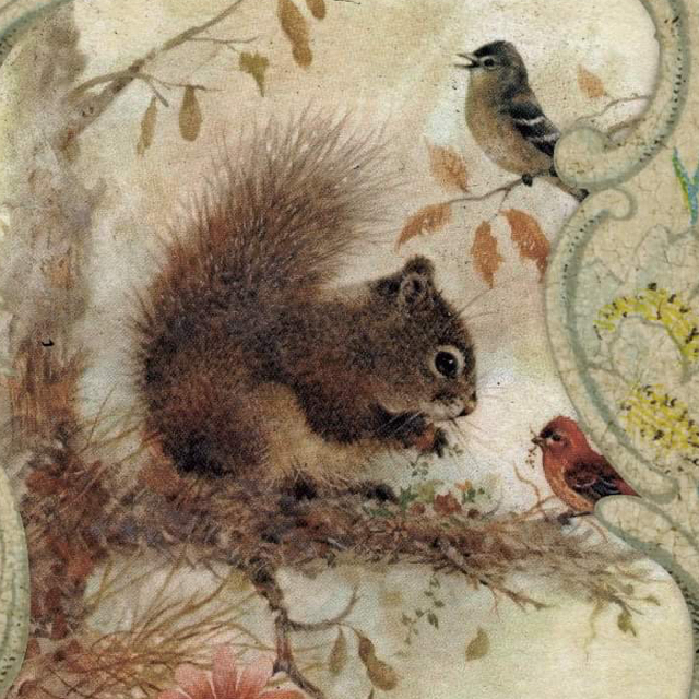 squirrel_antiques