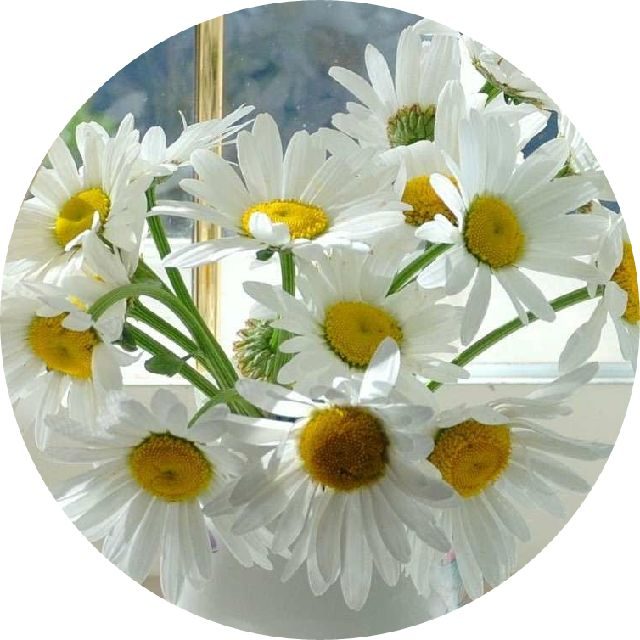 love0622love0804