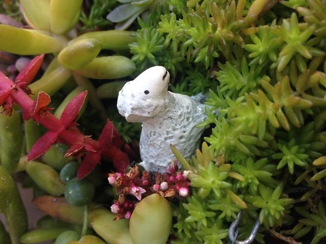 sheepsheepheart
