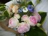 garden_aile