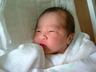 twinkle_little_star_2006