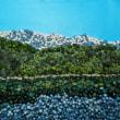 (878) 青木湖