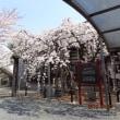 盛岡探訪⑤ 龍谷寺と 啄木のかかわり