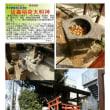 散策 「東京北西部-122」 延壽稲荷大明神