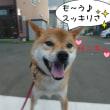 2017 9/22★今日はたろう君です★