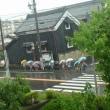 雨(土井卓美)