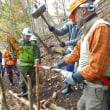 第11期森林ボランティア青年リーダー養成講座in関西 最終報告