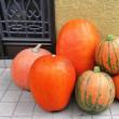 観賞用 かぼちゃ