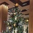 二子玉川のクリスマスツリー