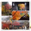 雨の上がるのを待って両界山横蔵寺へ・・・