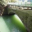 豪雨被害を受けて撤去が決定した明治の石橋「大肥橋」
