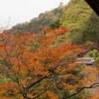 やっぱり京都にいこう、水路閣