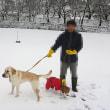 【オレオとクッキーが雪遊び!!】