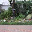もう一つのHoly Garden 2018初冬