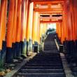 頂を目指して-京都市伏見区:伏見稲荷大社