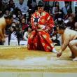 北九州相撲巡業(テレビのニュースより)