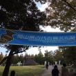 津島弥生祭り 総合グランド 2016.10.30 「287」