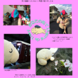Report of 「ジュゴンでトレイン!」 (Ride on the train with Dugong!)