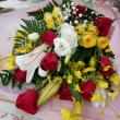 12月12日 明日の誕生花・ゆかりの花 花言葉は?(*^O^*)☆