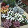 北西の花壇