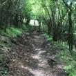 7・14・十里木展望台  登山・ハイキング