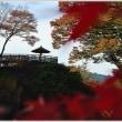 小諸城址懐古園の紅葉 (3の2)   ★ 2017.11.19 ★