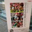 写真家たちが見つめるラグビー日本代表