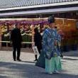 花図鑑69  健軍神社の菊花展