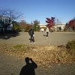 東勝山東公園ゲートボール場