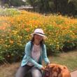 里山ガーデン秋の大花壇に行って来ました。