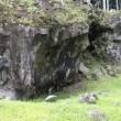 富士山すそ野一周ウォーキング(全17回);4回目(4);樹空の森と御胎内温泉;第4回の総括