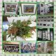 稲美の文化祭