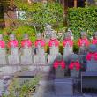 大原念仏寺 2015.11.11   Archives