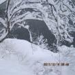 昨年同時期より降雪量は五倍以上ですが・・・ブログ更新しました!